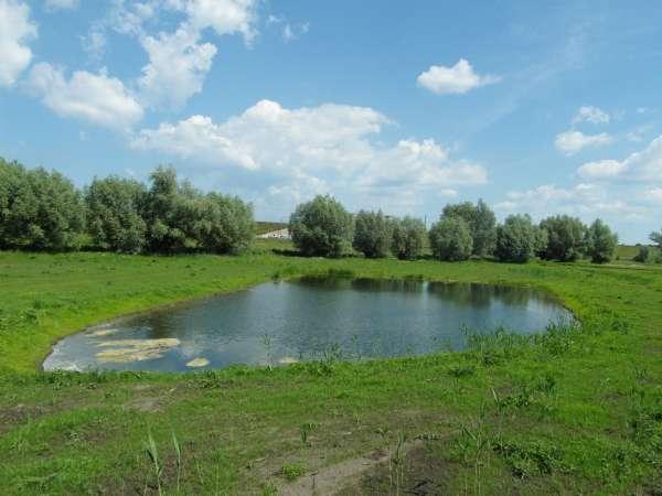 Zdjęcie 15 oferty TY177777 Kolnik, ul. Stare Wierzby