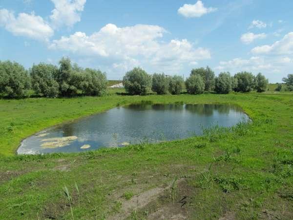 Zdjęcie 16 oferty TY177777 Kolnik, ul. Stare Wierzby