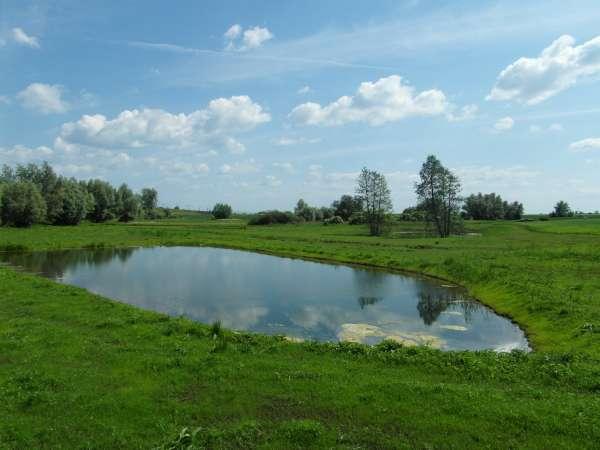 Zdjęcie 19 oferty TY177777 Kolnik, ul. Stare Wierzby