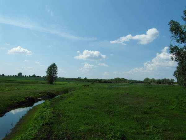 Zdjęcie 24 oferty TY177777 Kolnik, ul. Stare Wierzby