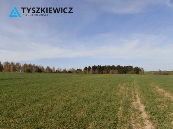 Zdjęcie 3 oferty TY065703 Zła Wieś
