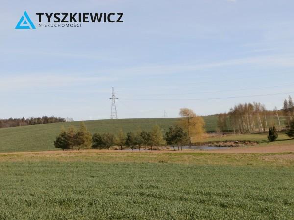 Zdjęcie 5 oferty TY065703 Zła Wieś