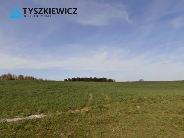 Zdjęcie 4 oferty TY065703 Zła Wieś
