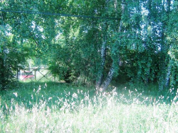 Zdjęcie 13 oferty TY065780 Głodowo, Polna