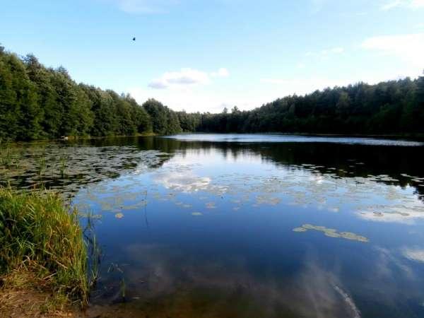 Zdjęcie 1 oferty TY066083 Górne Maliki, Jeziorna