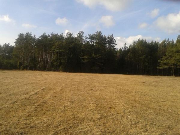 Działka siedliskowa na sprzedaż, Gostomko