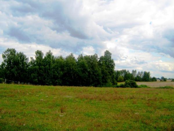 Zdjęcie 7 oferty TY066172 Liniewko Kościerskie, Polna