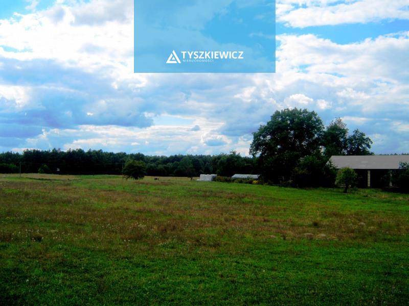 Zdjęcie 8 oferty TY066172 Liniewko Kościerskie, Polna