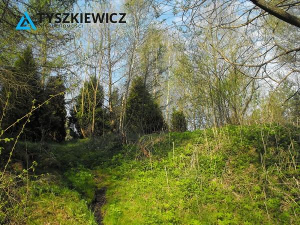 Zdjęcie 12 oferty TY523961 Wieck,
