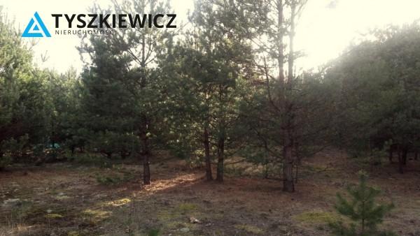 Zdjęcie 3 oferty TY523961 Wieck,