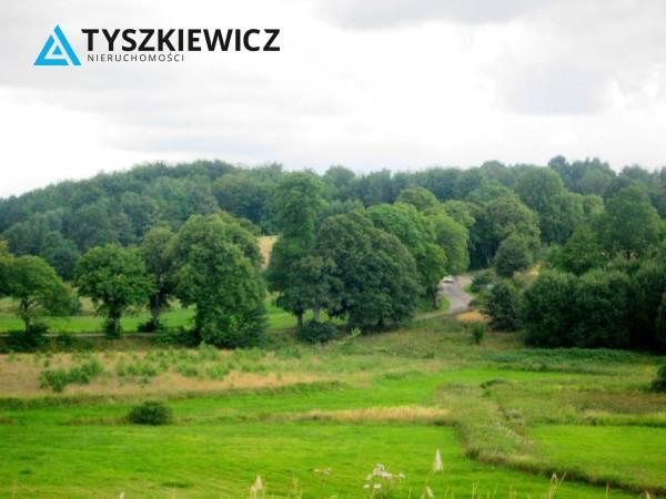 Działka rolna na sprzedaż, Nowa Wieś Przywidzka