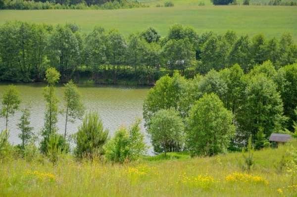 Zdjęcie 4 oferty TY164688 Kościerzyna,