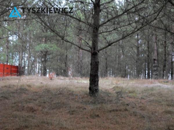 Zdjęcie 3 oferty TY154735 Stara Kiszewa,
