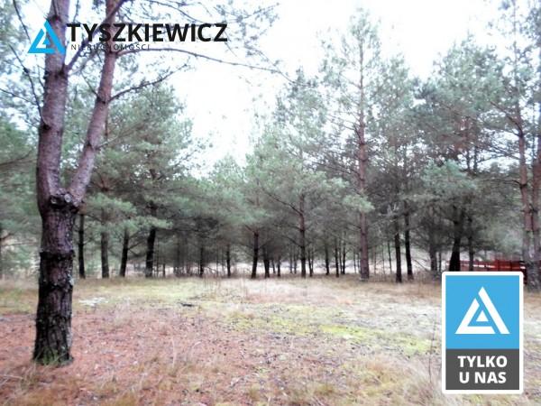 Zdjęcie 1 oferty TY154735 Stara Kiszewa,