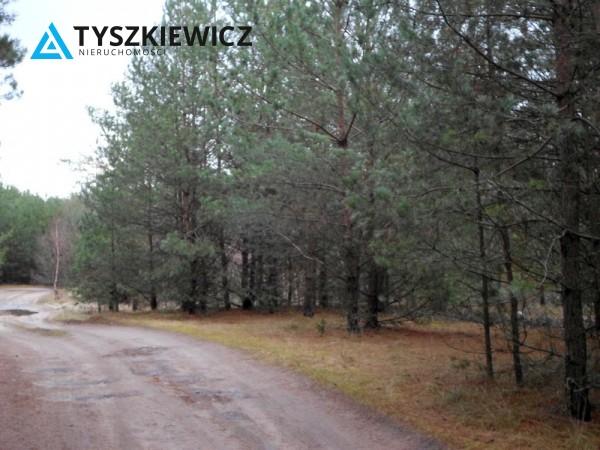 Zdjęcie 5 oferty TY154735 Stara Kiszewa,