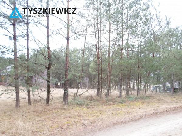 Zdjęcie 6 oferty TY154735 Stara Kiszewa,