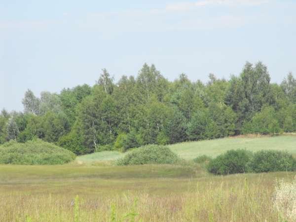 Działka rolna na sprzedaż, Szteklin