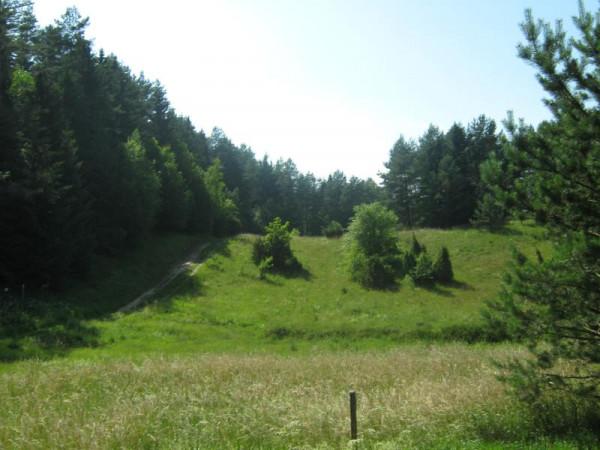 Zdjęcie 5 oferty TY067632 Świeszyno, Miastka