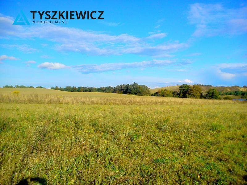 Zdjęcie 2 oferty TY067724 Godziszewo,