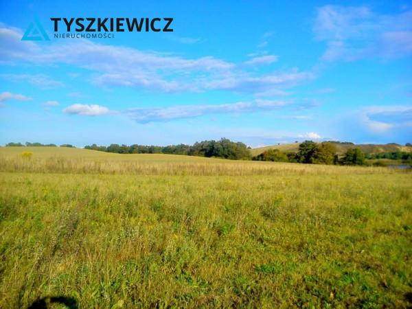 Zdjęcie 3 oferty TY067724 Godziszewo,