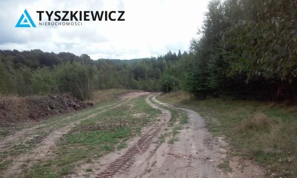 Zdjęcie 8 oferty TY068676 Huta Dolna, ul. Dąbrowa