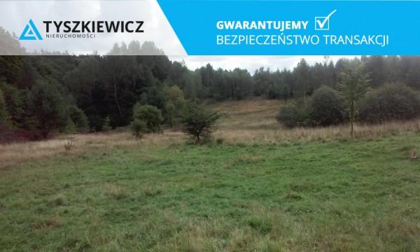 Zdjęcie 1 oferty TY068676 Huta Dolna, ul. Dąbrowa