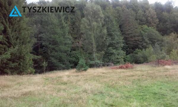 Zdjęcie 4 oferty TY068676 Huta Dolna, ul. Dąbrowa
