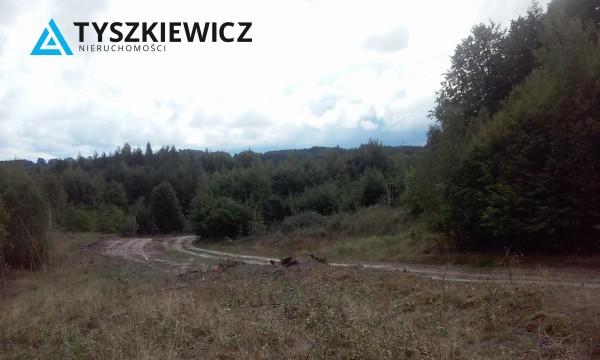 Zdjęcie 2 oferty TY068677 Huta Dolna, ul. Dąbrowa