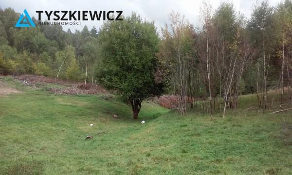 Zdjęcie 4 oferty TY068677 Huta Dolna, ul. Dąbrowa