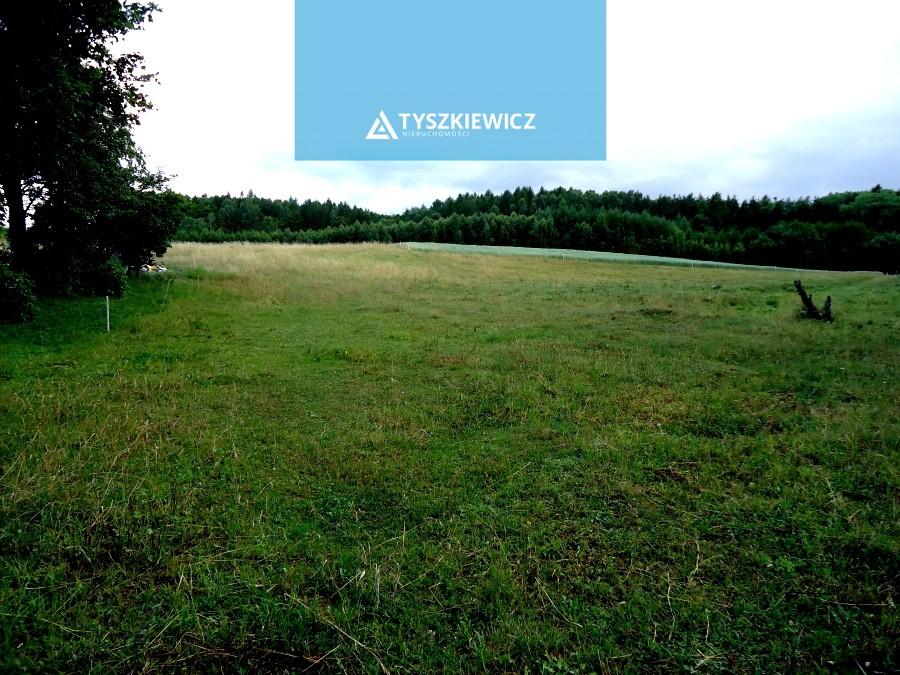 Zdjęcie 7 oferty 6252 Ełganowo, ul. Leśna