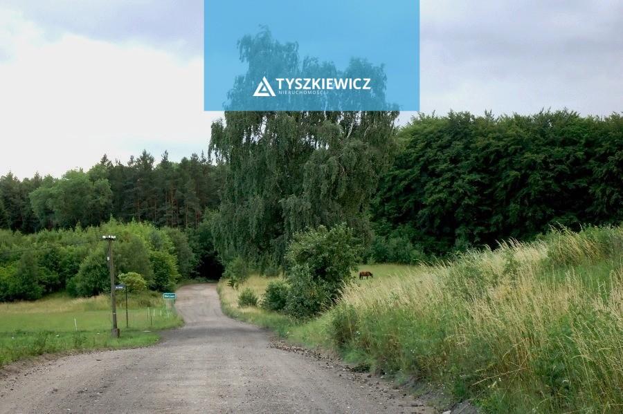 Zdjęcie 9 oferty TY069251 Ełganowo, ul. Leśna