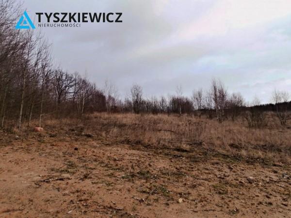 Zdjęcie 4 oferty TY070331 Łapino Kartuskie