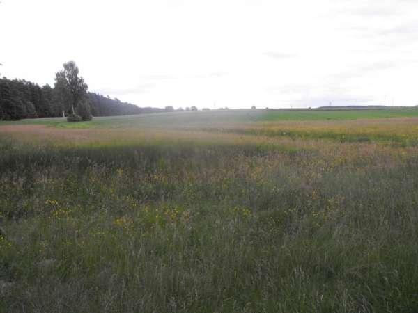 Działka siedliskowa na sprzedaż, Chojnice