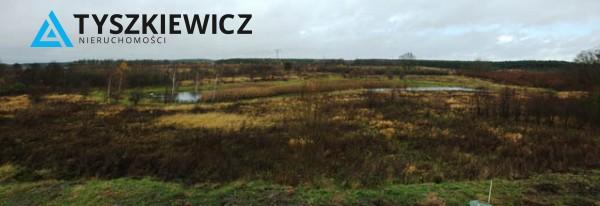 Zdjęcie 14 oferty TY070688 Bielkowo, ul. Nad Stawem