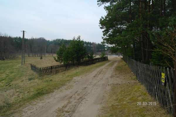 Zdjęcie 5 oferty TY070757 Wąglikowice