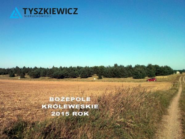 Zdjęcie 6 oferty TY071389 Bożepole Królewskie, Nowopowsające Osiedle Domów