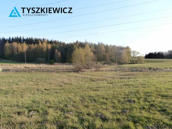 Zdjęcie 6 oferty TY071395 Niestępowo, Na Sulmin