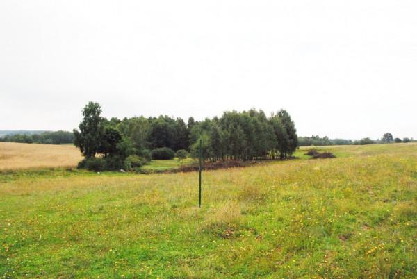 Zdjęcie 3 oferty TY072465 Grabowska Huta