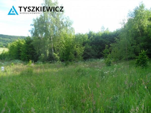 Zdjęcie 5 oferty TY799673 Marszewska Kolonia,