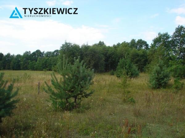 Zdjęcie 7 oferty TY061595 Krosnowo, Bytów