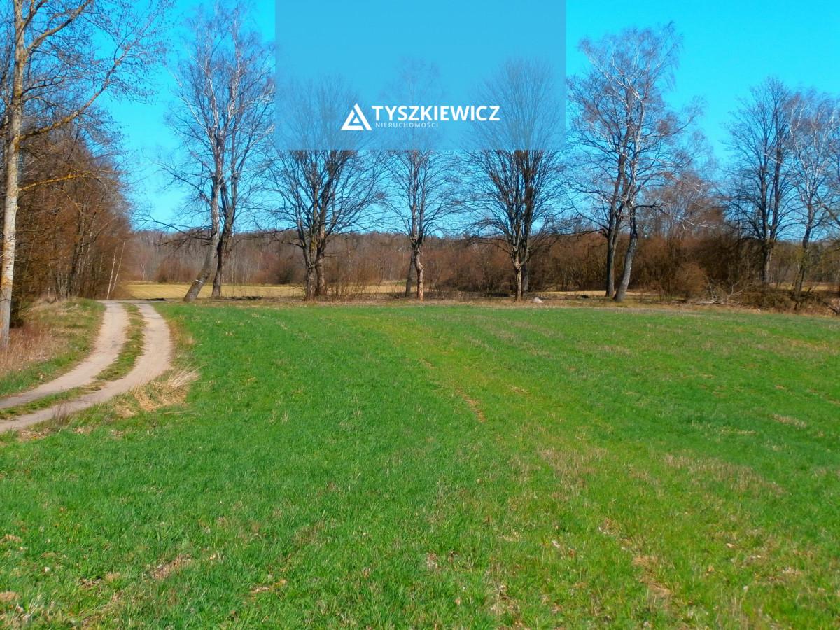 Zdjęcie 2 oferty TY236919 Liniewo,