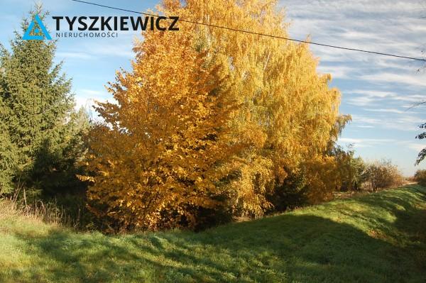 Zdjęcie 12 oferty TY400056 Gdańsk Olszynka, ul. Modra