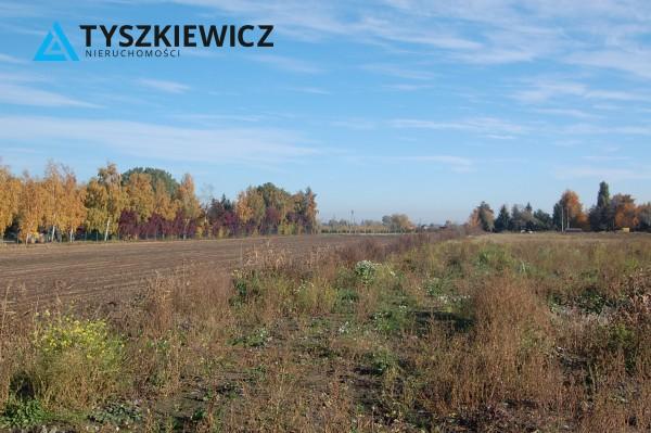 Zdjęcie 16 oferty TY400056 Gdańsk Olszynka, ul. Modra