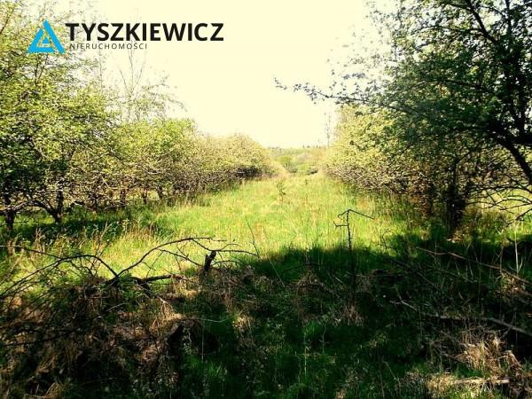 Zdjęcie 1 oferty TY614074 Gniewowo, ul. Wejhera