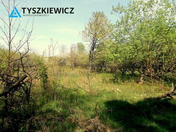 Zdjęcie 2 oferty TY614074 Gniewowo, ul. Wejhera