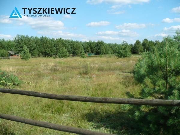 Zdjęcie 1 oferty TY925668 Wąglikowice,