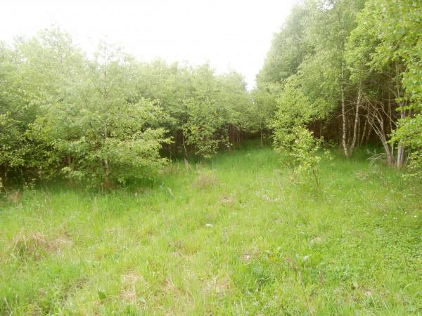 Zdjęcie 5 oferty TY540127 Miastko, ul. Koszalińska