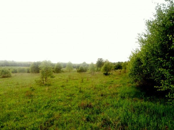 Zdjęcie 8 oferty TY540127 Miastko, ul. Koszalińska