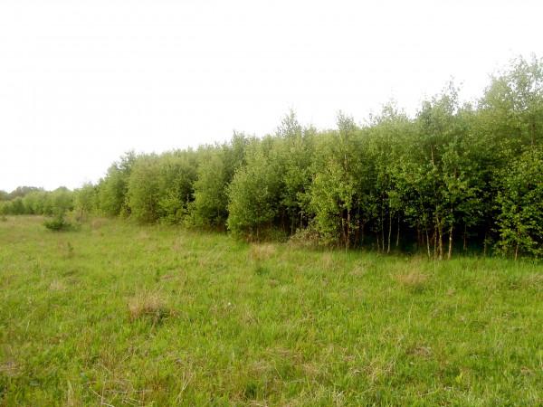 Zdjęcie 1 oferty TY540127 Miastko, ul. Koszalińska