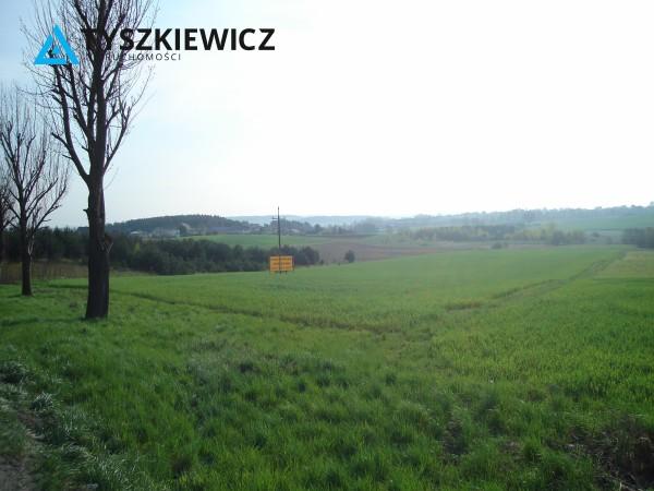 Zdjęcie 2 oferty TY656489 Glincz,